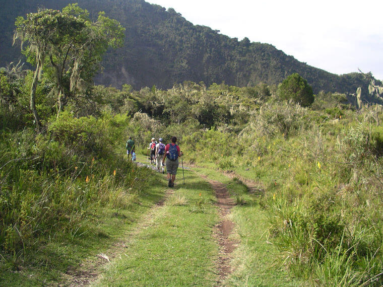 Wandel safari in Arusha National Park Tanzania