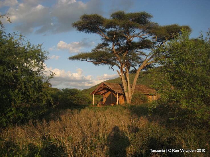 Mkomazi National Park Tanzania