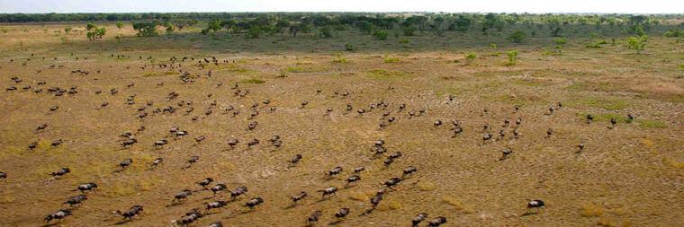Bangweulu Wetlands uit de lucht Zambia