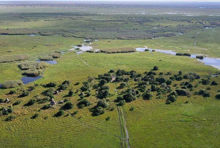 Shoebill Island Bangweulu Wetlands Zambia