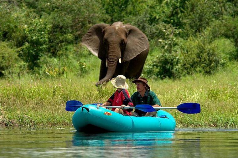 Kanoën op de Zambezi in Mana Pools National Park Zimbabwe