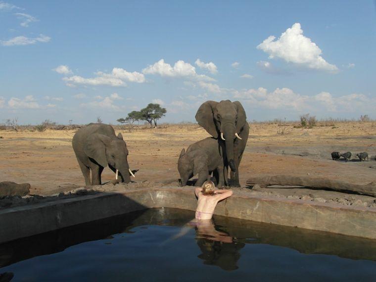 Zwemmen met olifanten Hwange National Park Zimbabwe