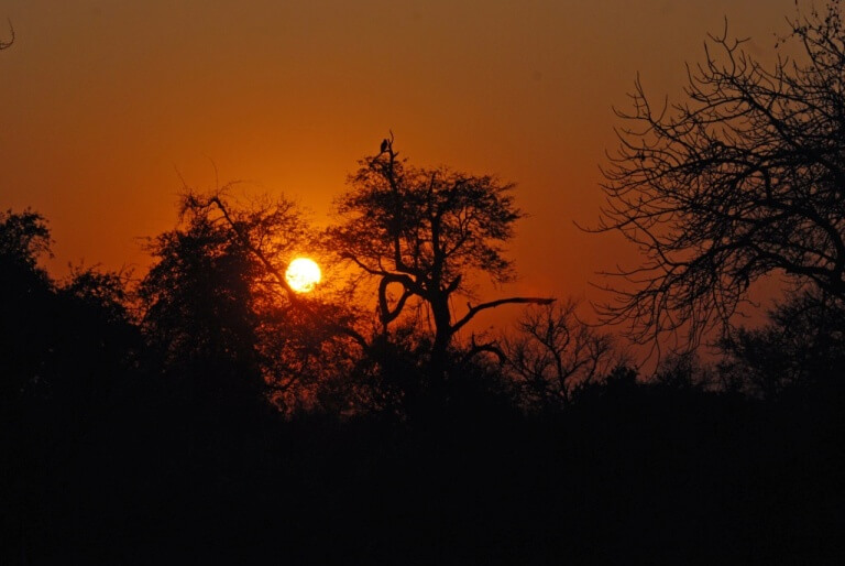 Zonsondergang in Lengwe National Park Malawi