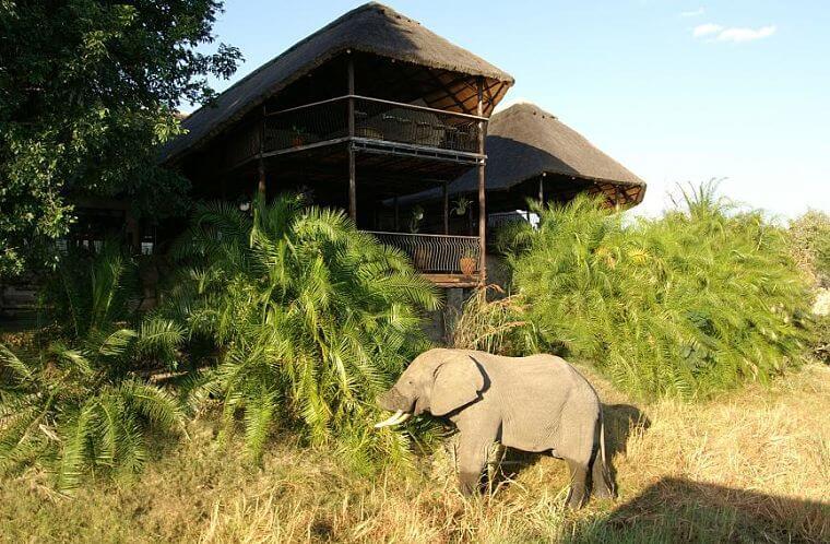 Mukambi Safari Lodge Kafue National Park Zambia