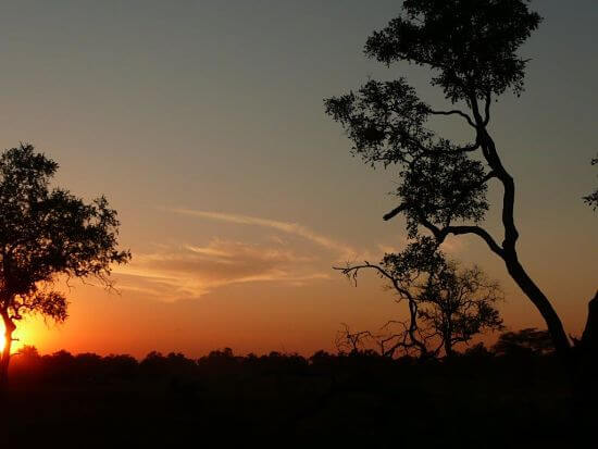 Zonsondergang in South Luangwa National Park Zambia