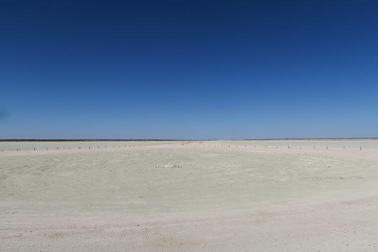 Enorme zoutpan van Etosha National Park in Namibië