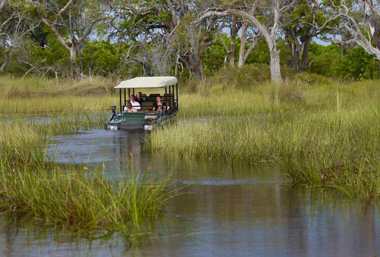 Game drive in Okavango Delta