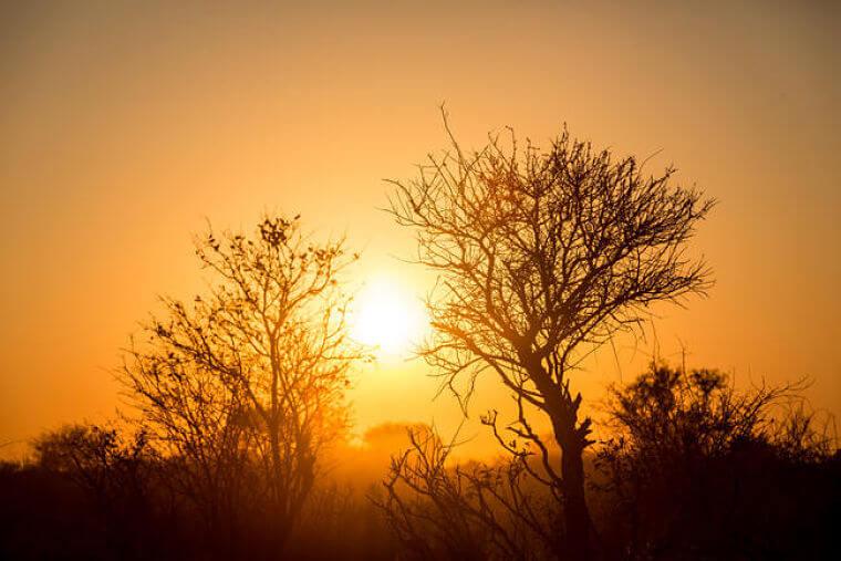 Hainaveld Botswana