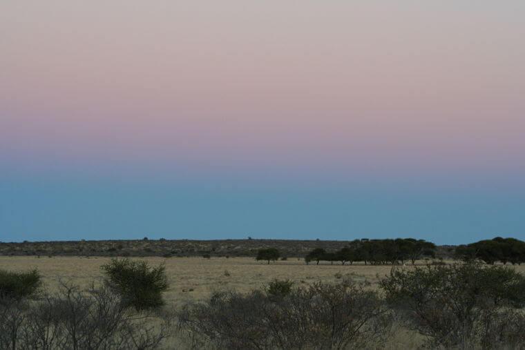Eindeloze vlaktes in Central Kalahari Game Reserve Botswana