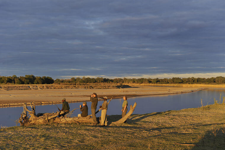 Wandel safari in South Luangwa National Park Zambia