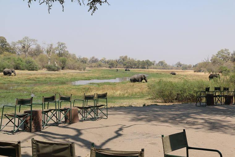 Machaba in Khwai Community Area Botswana