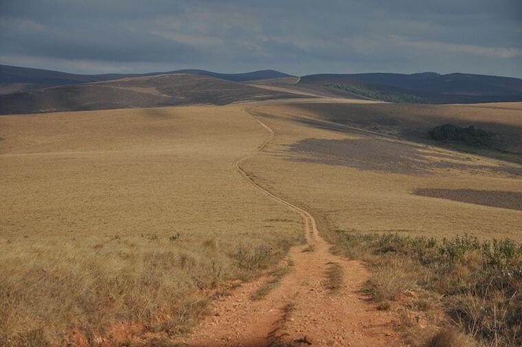 Nyika Plateau National Park Malawi