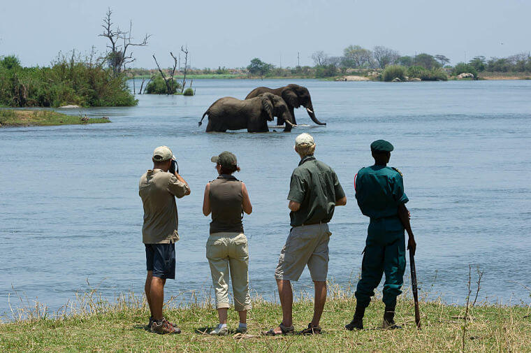 Malawi safari op maat wandelsafari in Majete Wildlife Reserve | Mambulu! Safaris With A Difference