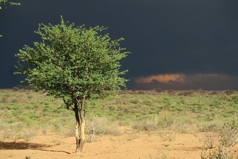 Zware onweerswolken boven Botswana
