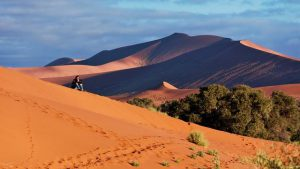 Sossusvlei in Namib Naukluft National Park Namibië