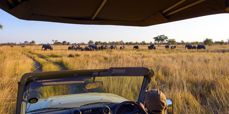 Mudumu National Park in Zambezi regio Namibië