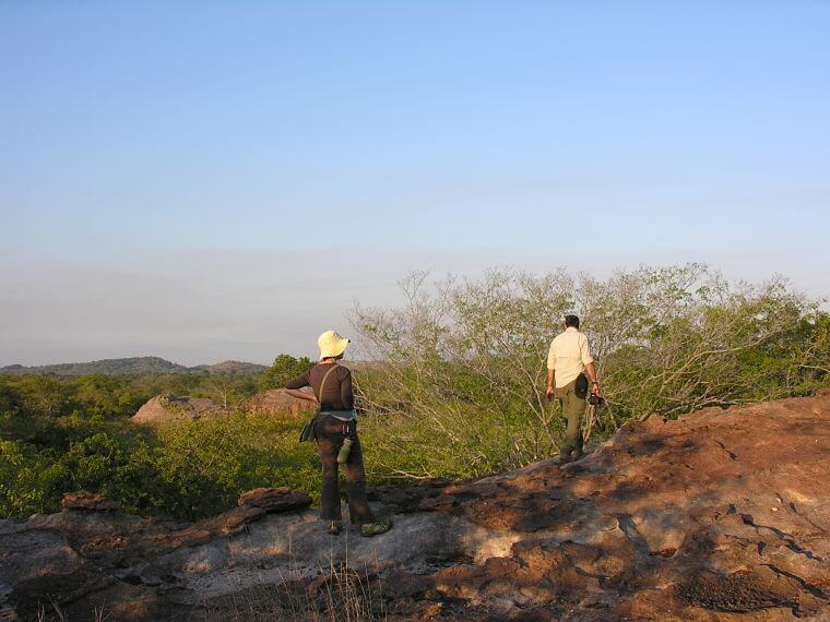 Wandel safari in Mwabvi Wildlife Reserve in Malawi