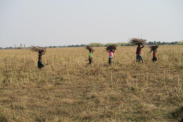 Lake Bangweulu lokale bewoners, Zambia