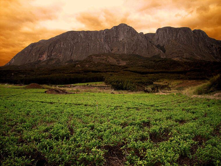 Mount Mulanje in zuid Malawi