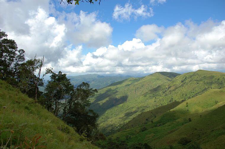 Viphya Plateau in noord Malawi