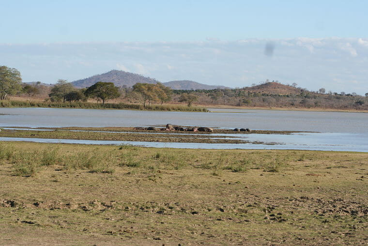 Vwaza Marsh Wildlife Reserve in noord Malawi