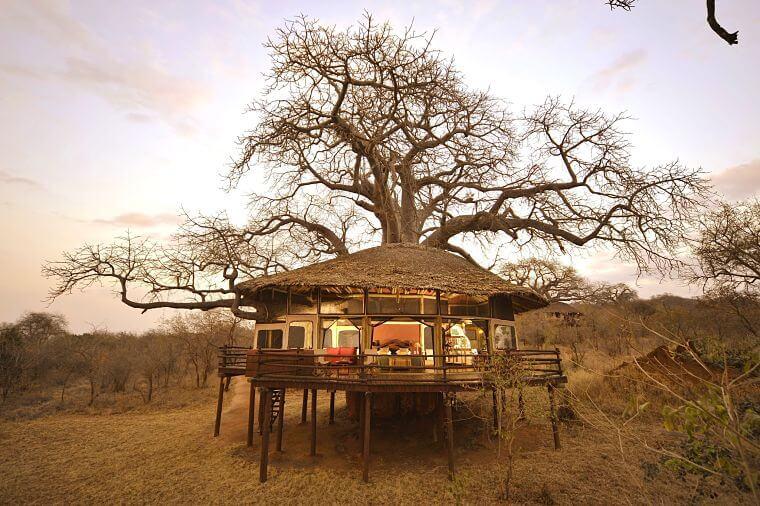Tarangire Treetop Treehouse
