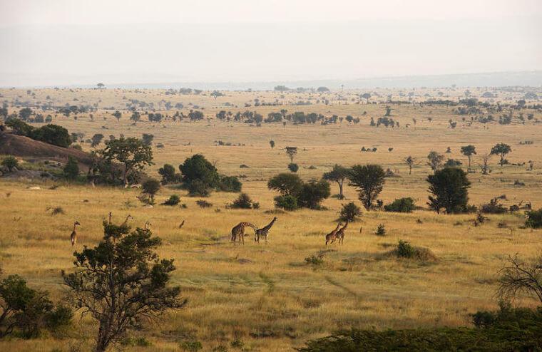 Uitzicht Mkombe's House Lamai Tanzania