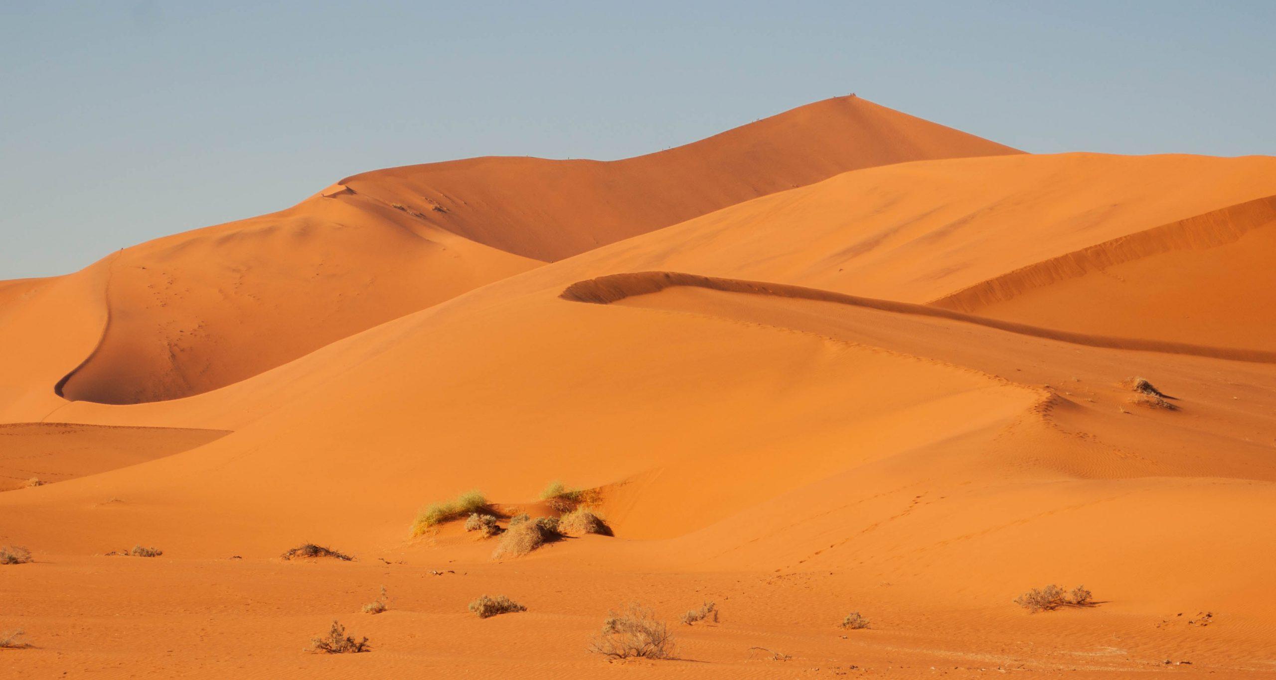 Selfdrive Namibie Sossusvlei zandduinen
