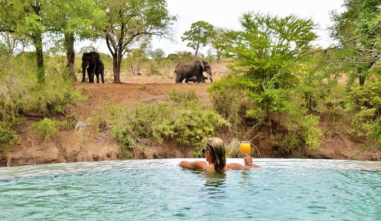 Imbali Safari Lodge Kruger National Park Zuid-Afrika