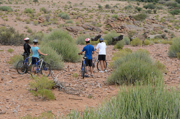 Noord Kaap game viewing per mountain bike Zuid-Afrika