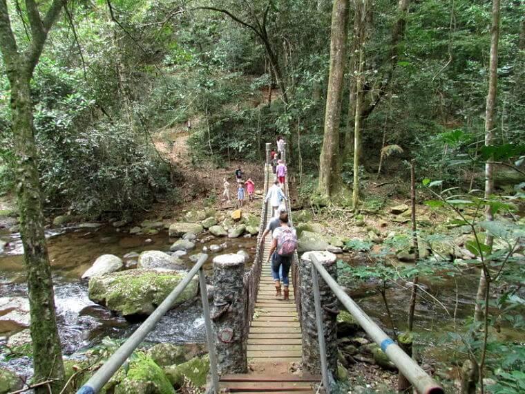 Udzungwa National Park avontuurlijke wandelingen (@ Udzungwa Forest Camp)