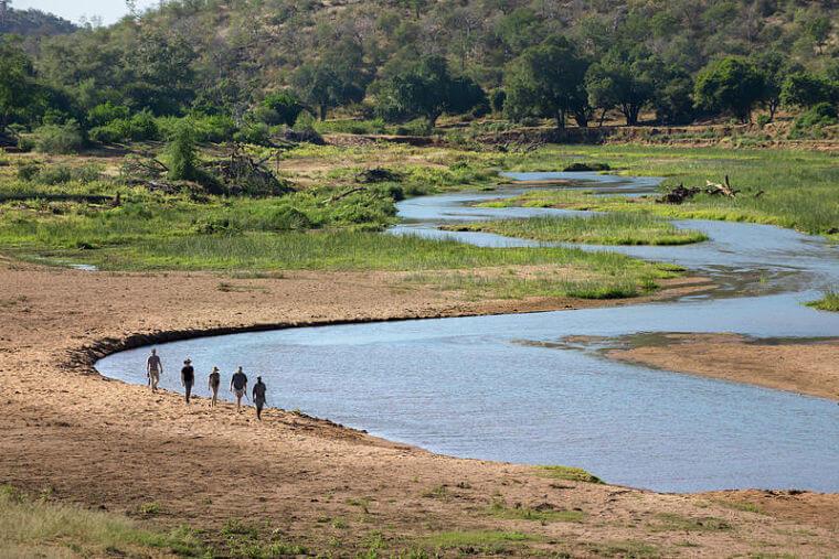 Wandel safari in Pafuri langs de Luvuvhu River Zuid-Afrika (@ Dook)