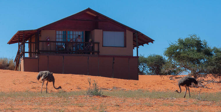 Dune chalet bij Bagatelle Kalahari Game Ranch Kalahari woestijn Namibië