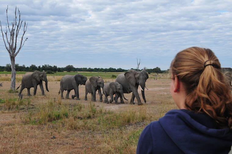 Familie van Houts op safari in Malawi en Zambia