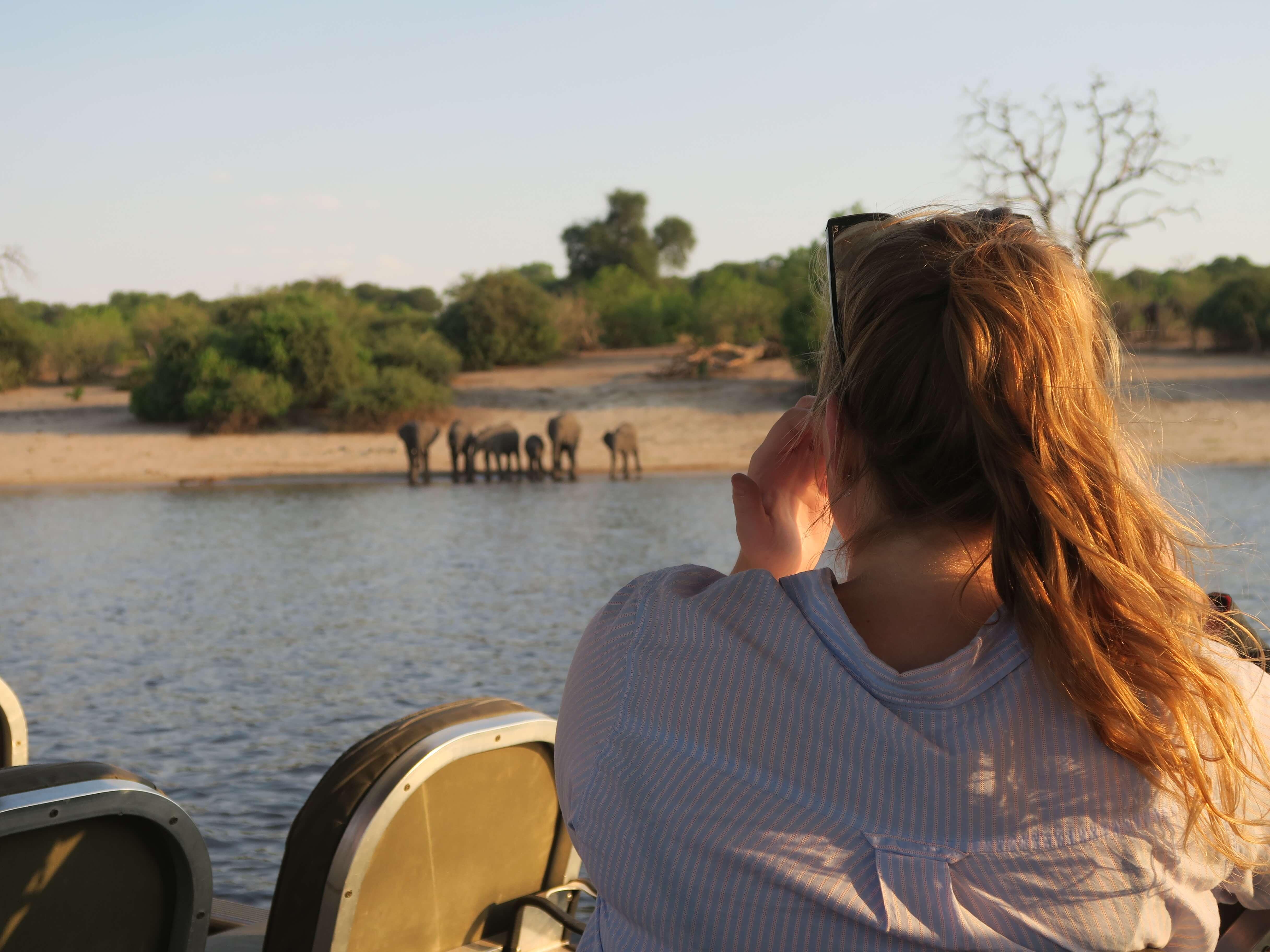 Olifanten tijdens boot safari Chobe rivier Botswana