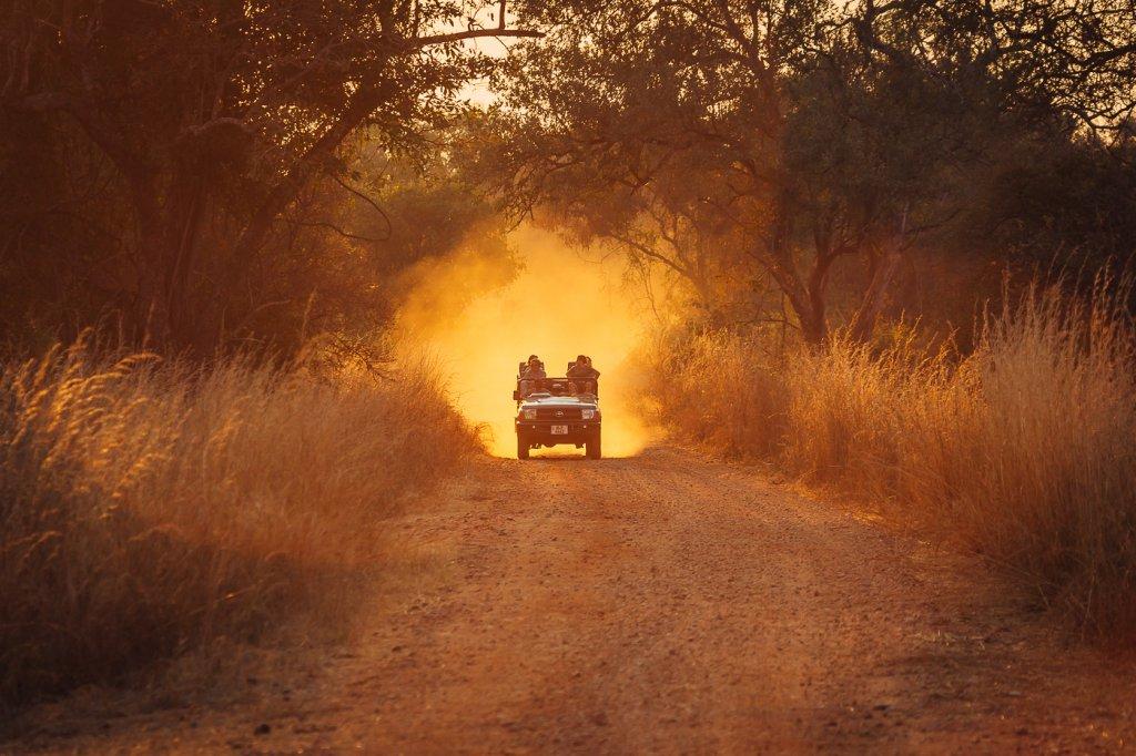 Game drive South Luangwa National Park Zambia (Bryan Geli)