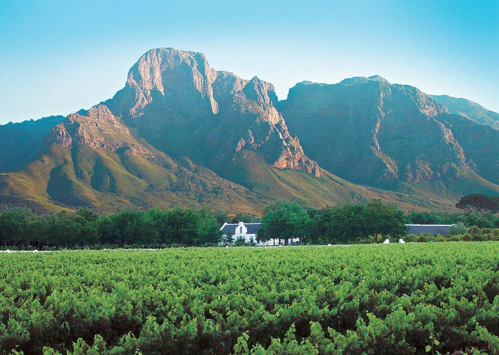 Boschendal Wine Estate Zuid-Afrika