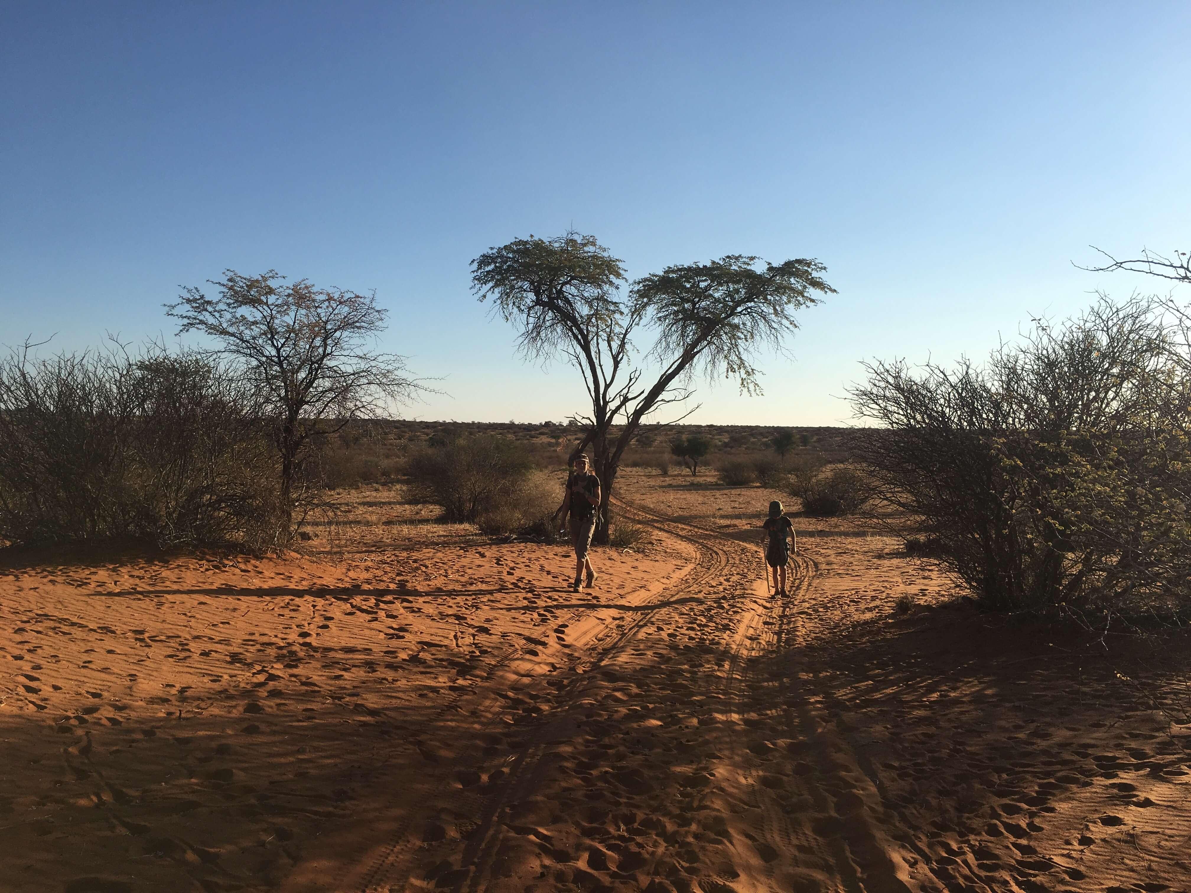 Familie van der Kolk op wandel safari in Namibië