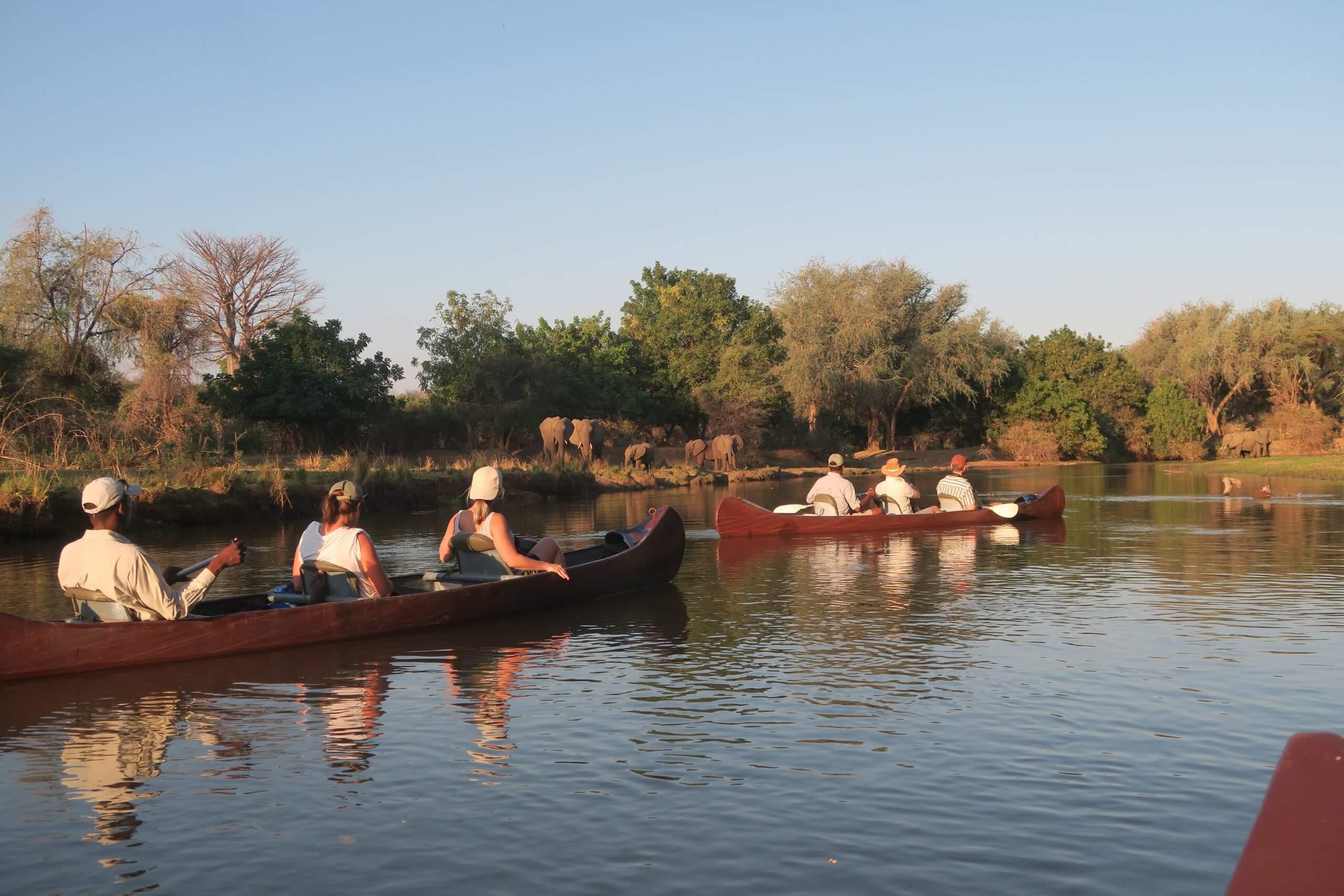 Lower Zambezi kanotocht