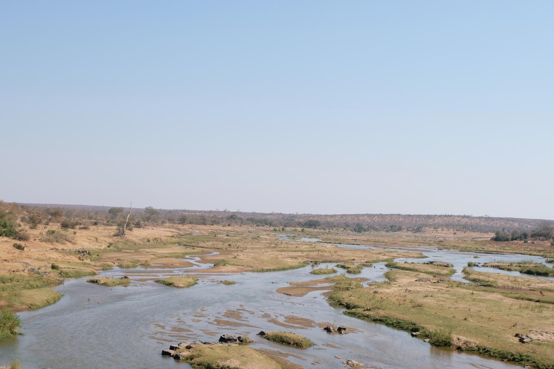 Kruger National Park, landschap met rivier, Zuid-Afrika