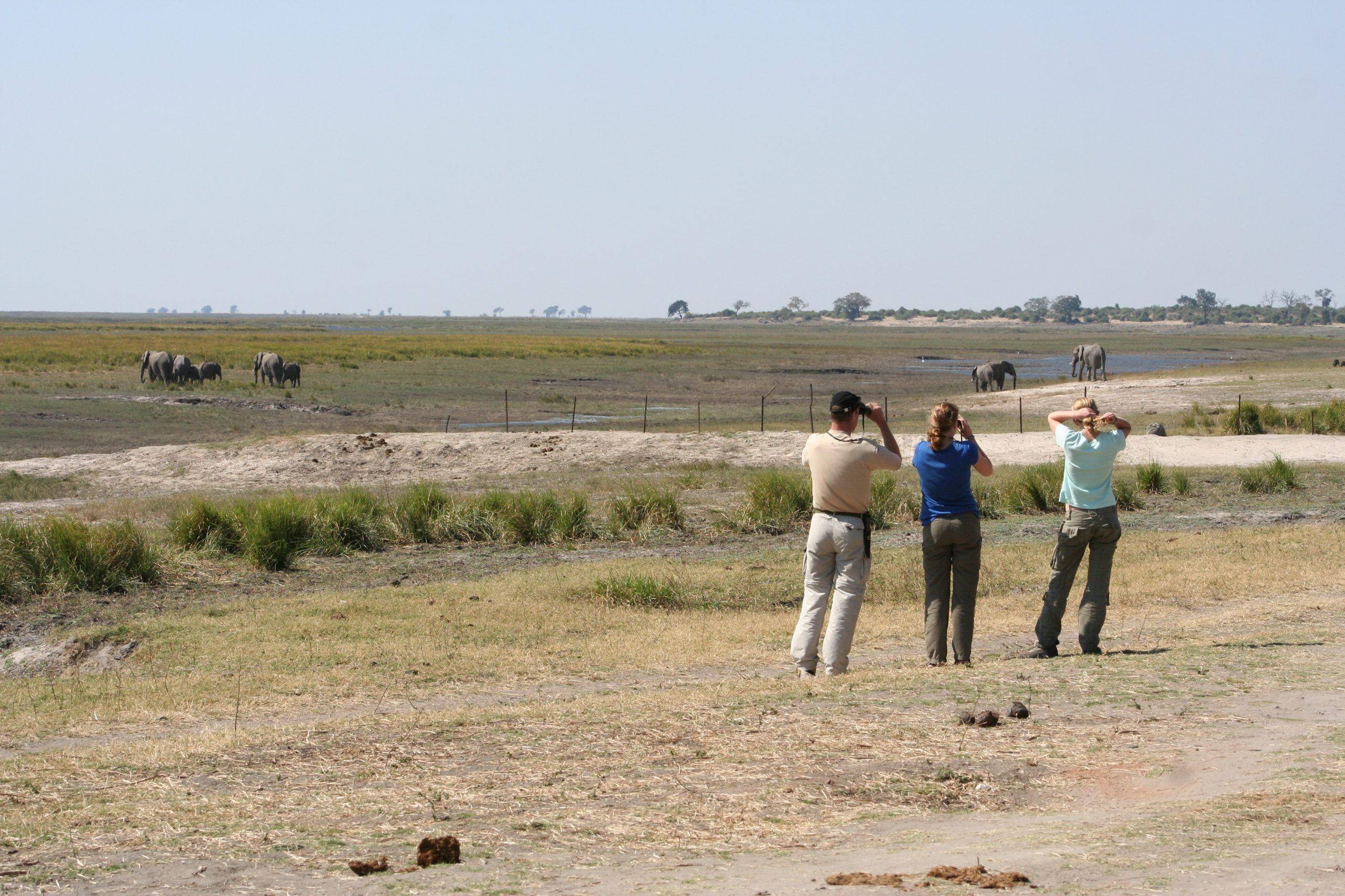 Uitzicht vanaf Ihaha Campsite, Botswana