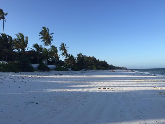 Witte zandstranden en palmen op Zanzibar