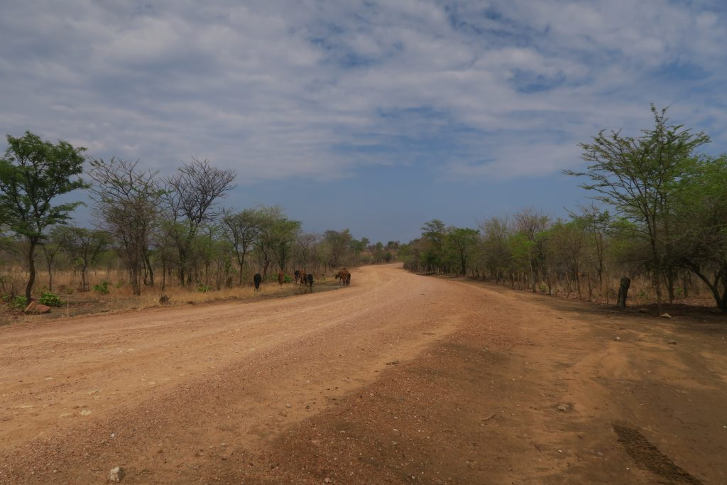 Back Road Lake Kariba Zimbabwe