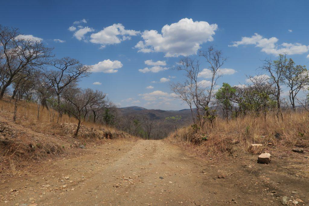 Leopard Hill Road - Zambia