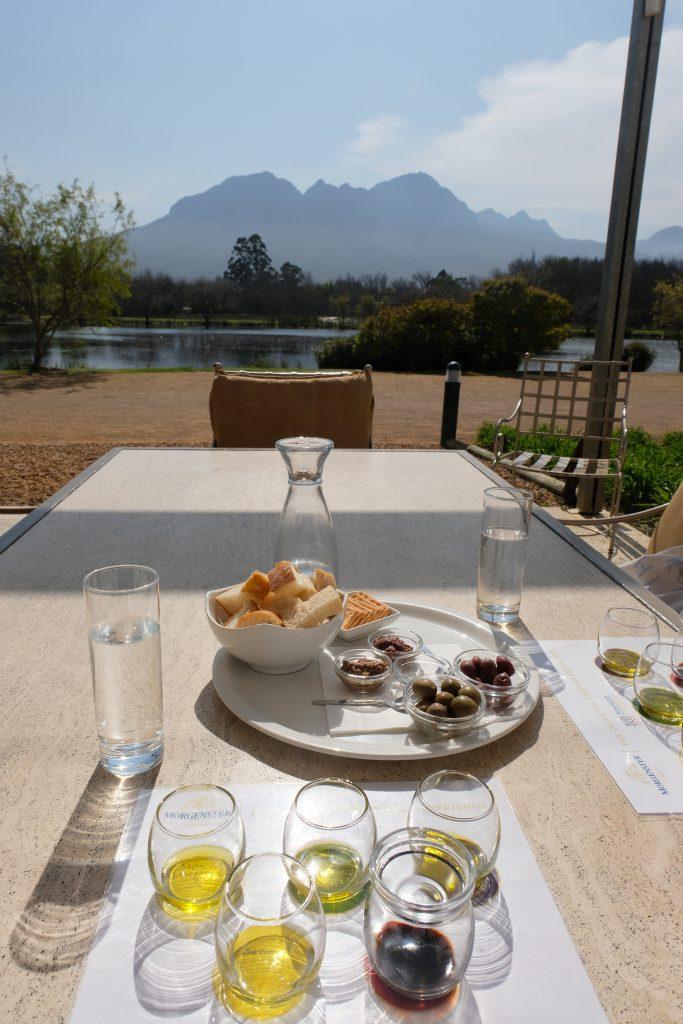 Morgenster, olijf en wijntasting, Zuid-Afrika