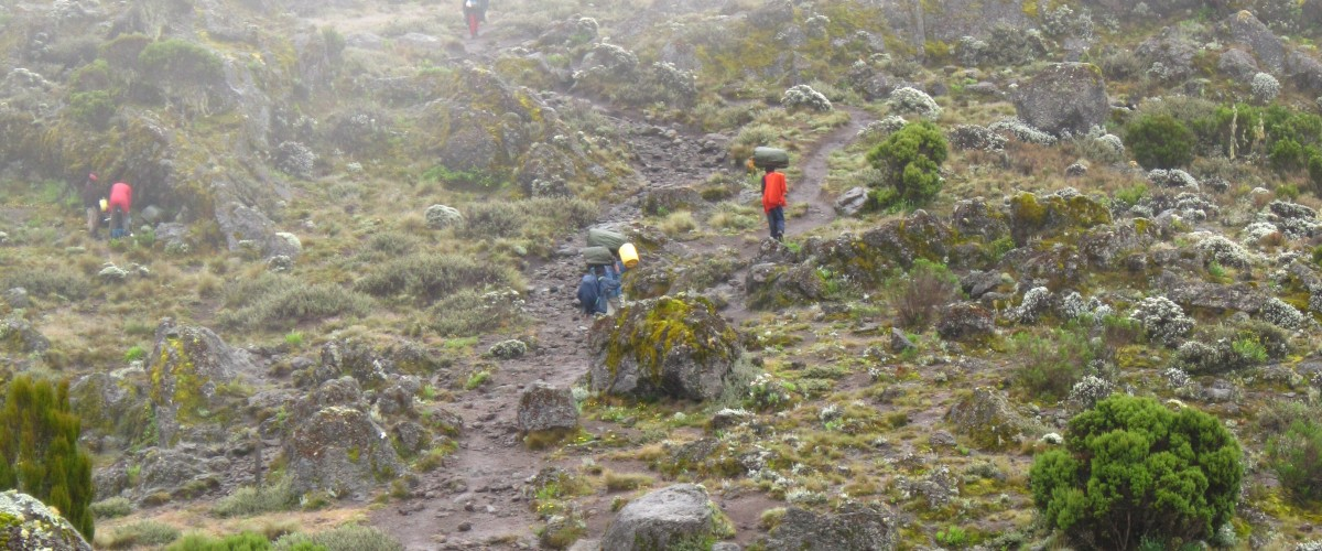 Beklimming Mt Kilimanjaro Tanzania