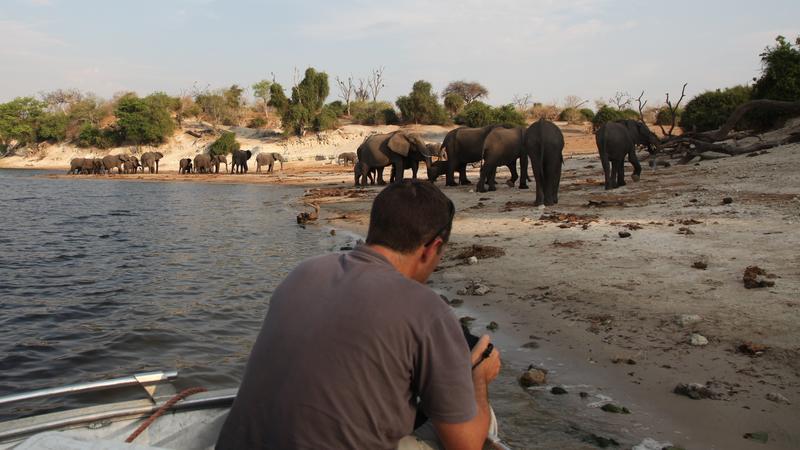 Boot safari op Chobe rivier in Botswana