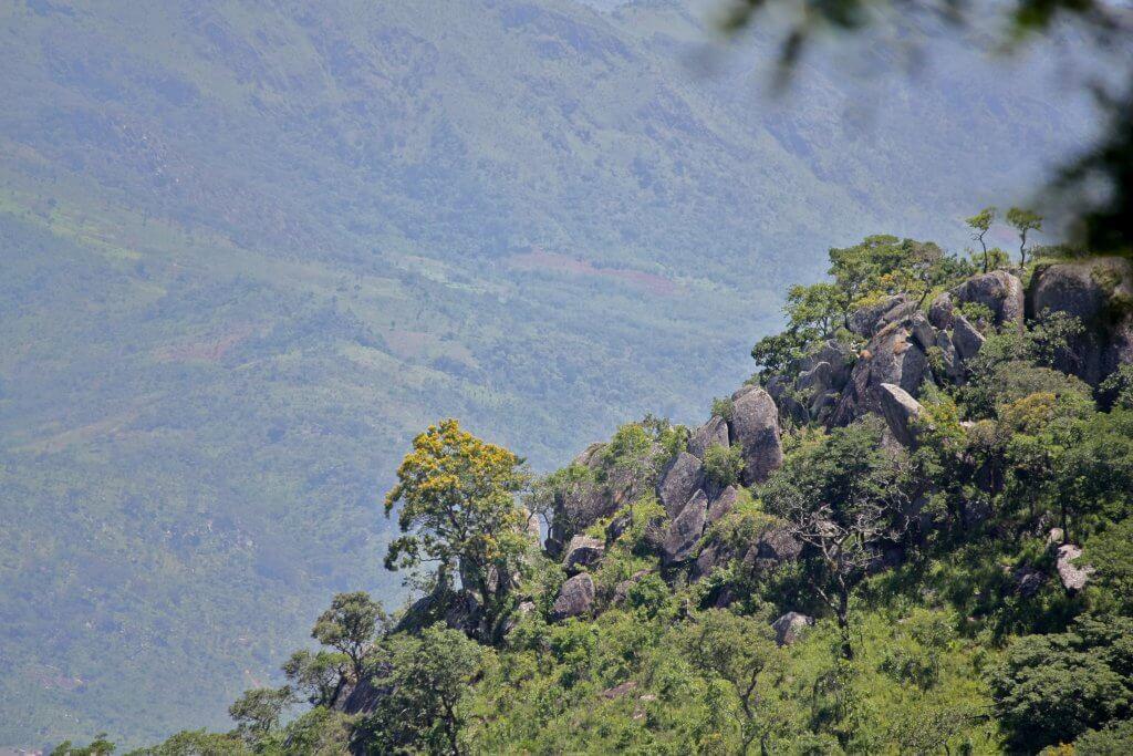 Mount Vumba, Eastern Highlands, Zimbabwe