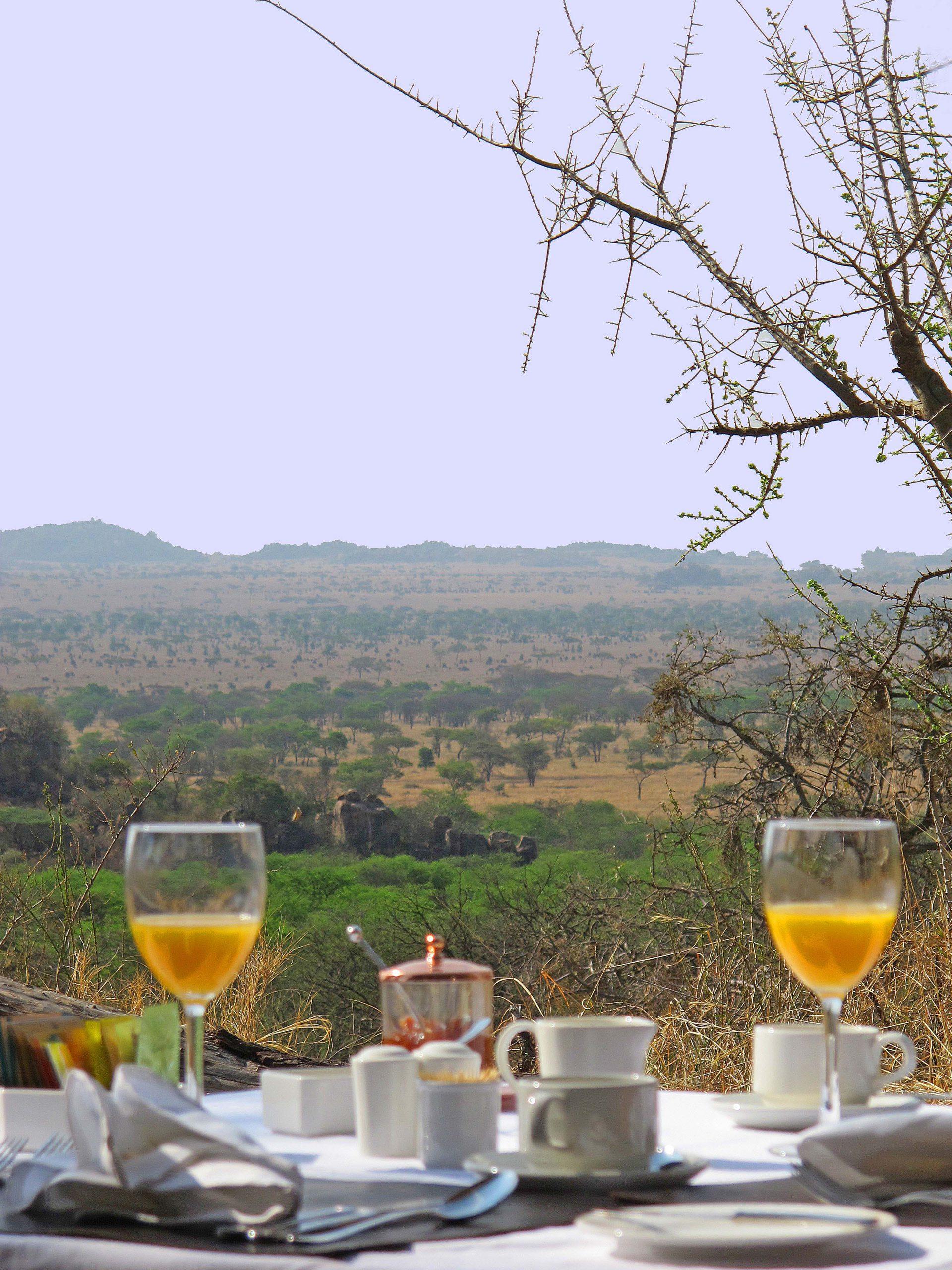 Ontbijt met uitzicht bij Pioneer Serengeti Camp Tanzania