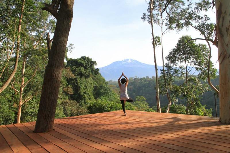 Uitzicht vanaf terras Kaliwa Lodge op Kilimanjaro Tanzania